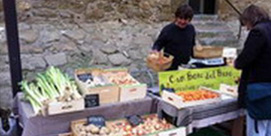 Photo of Món Empordà organic market in Verges