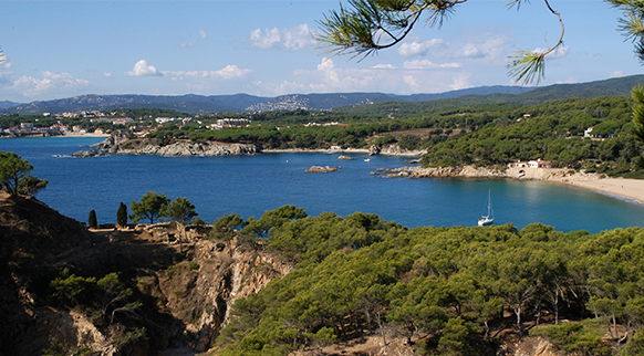 Photo of Platja de Castell in Palamós