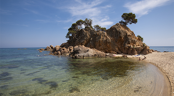 Photo of Cala de Cap Roig in Sant Antoni de Calonge (Calonge)