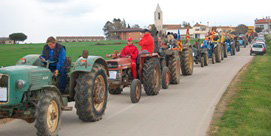 Photo of County Spring Fair in Campllong